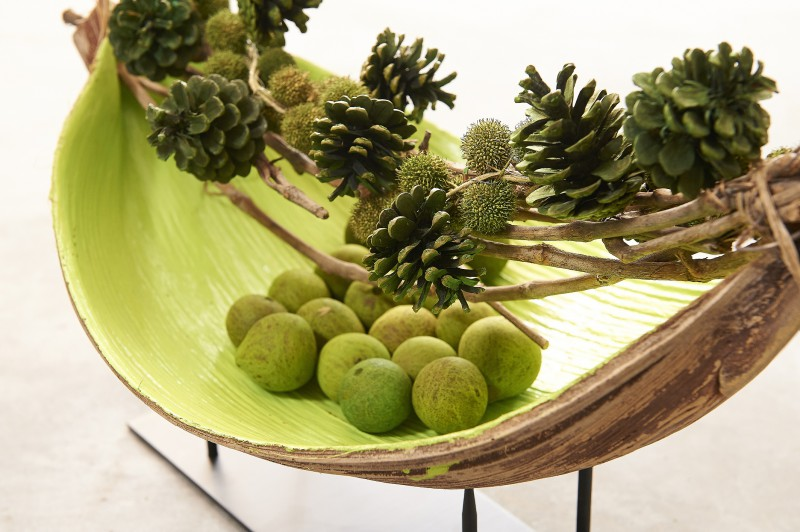 Kokosblatt galera offen for Holzschale dekorieren