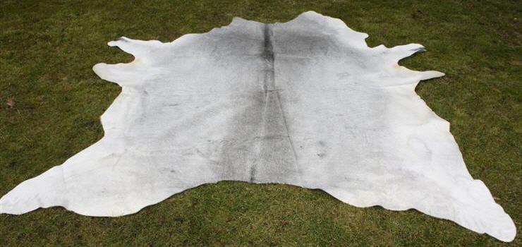 kuhfell grau 3 4m graues kuhfell kuhfellteppich in grau. Black Bedroom Furniture Sets. Home Design Ideas